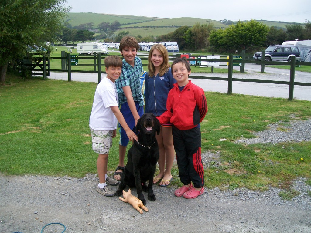Dog breaks - Lobb Fields, Braunton, North Devon - 01271 812090