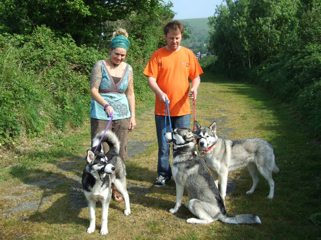Dog friendly - Lobb Fields, Braunton, North Devon - 01271 812090